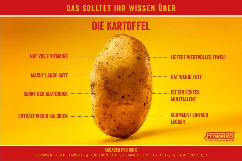 kartoffeln kohlenhydrate pro 100g